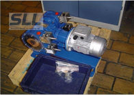 Double Heads Hose Squeeze Pump For Chemical / Mining / Food Industry